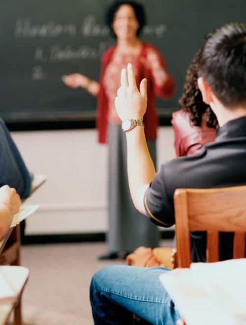 asesoría educación y pedagogías alternativas