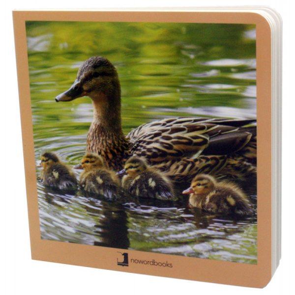 libros imágenes animales en familia 1