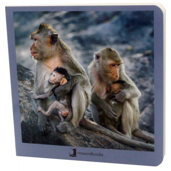 libros imágenes animales en familia 2