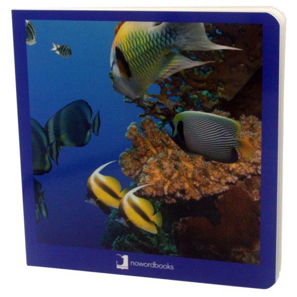 libros imágenes animales marinos