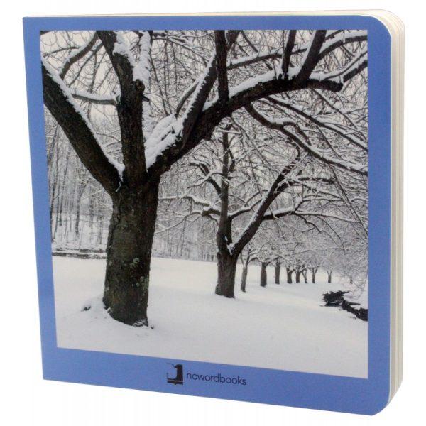 libros imágenes invierno