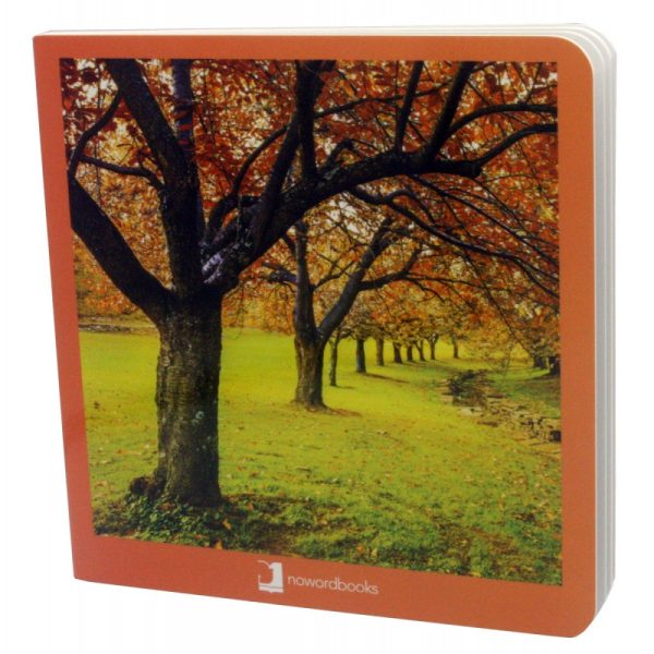 libros imágenes otoño