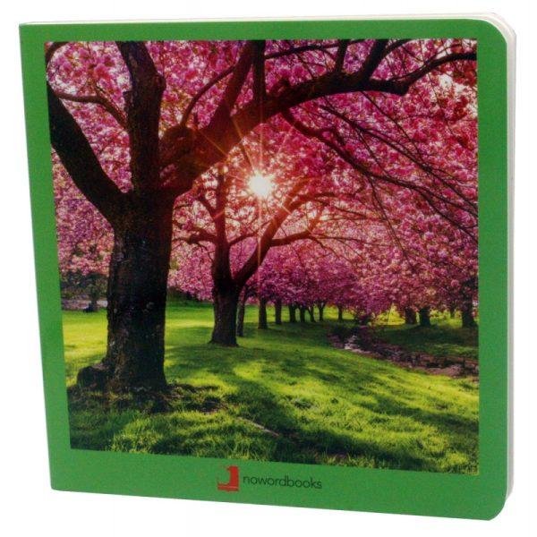 libros imágenes primavera
